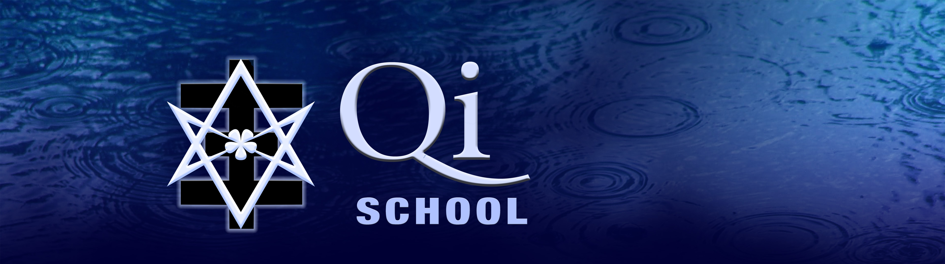 The Qi School
